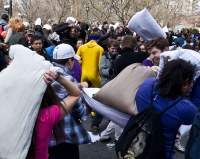 Pillow Fight Day 2011