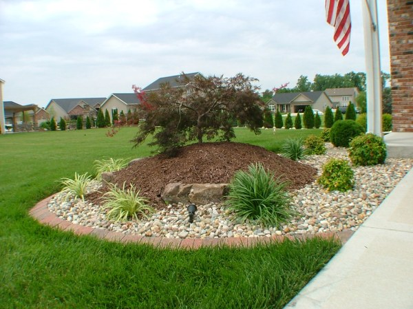front corner tree mulch shrubs