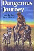 Dangerous Journey by Rosemary Simmonds
