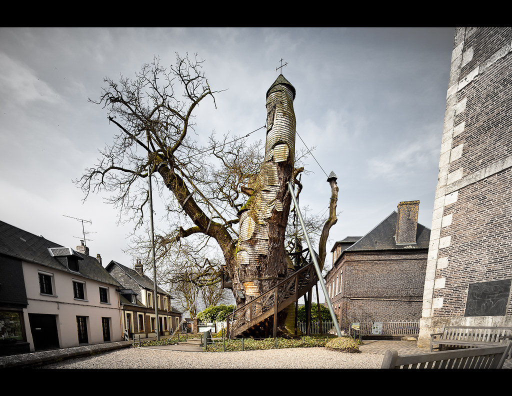 The Oak Chapel  This Oak Tree is located in France in a No  Flickr