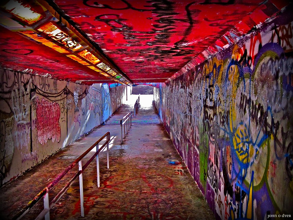 NC State Free Expression Tunnel 1  NC State University Ser  Flickr