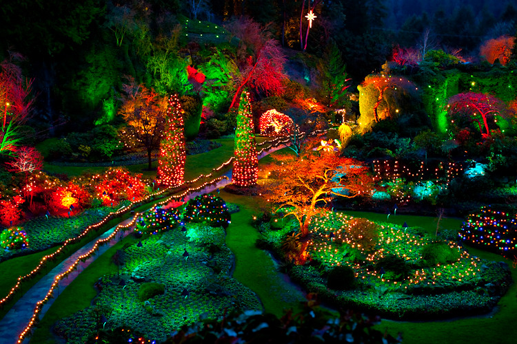 Free Fall Bc Nature Wallpaper Butchart Gardens At Night Escapada A Victoria Bc Y
