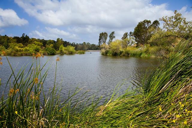 Laguna Niguel Regional Park  Flickr  Photo Sharing