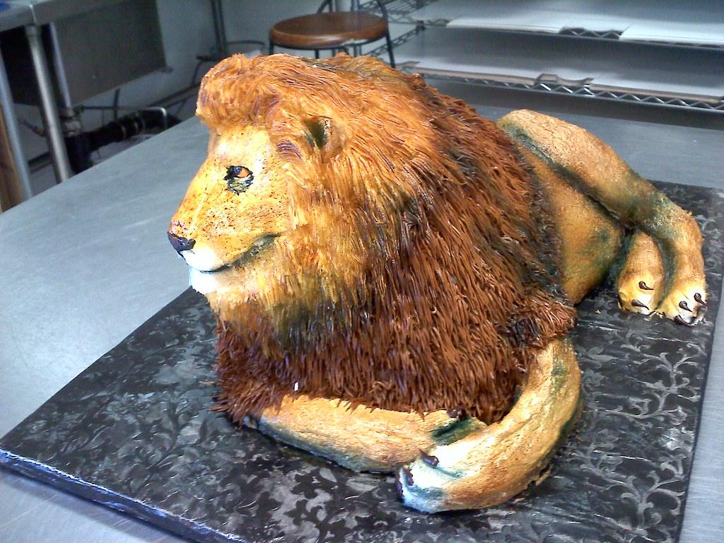 lion cake  lion cake  Cake Shop  Flickr