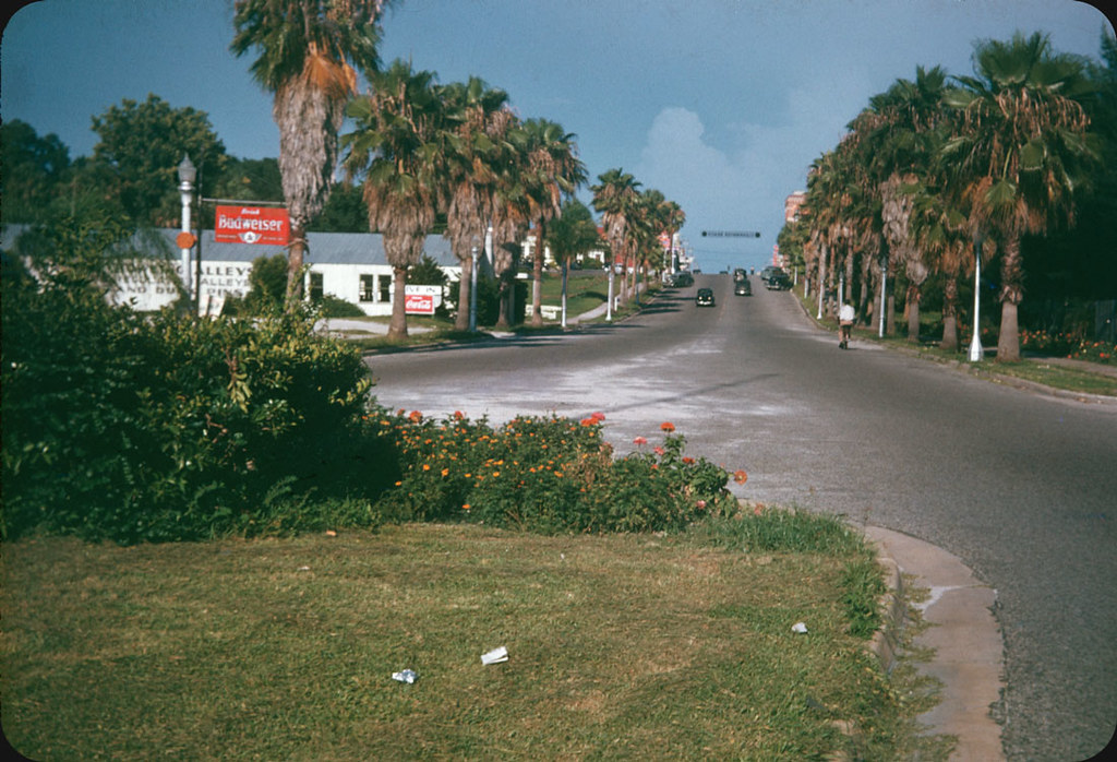Clearwater Fl 1947 Lantana Roses And An Old