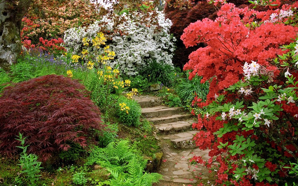 Scotney Castle Landscape Gardens Kent England  Flowerin