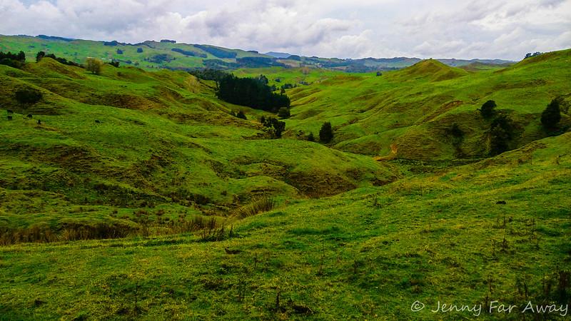 North Taranaki hills