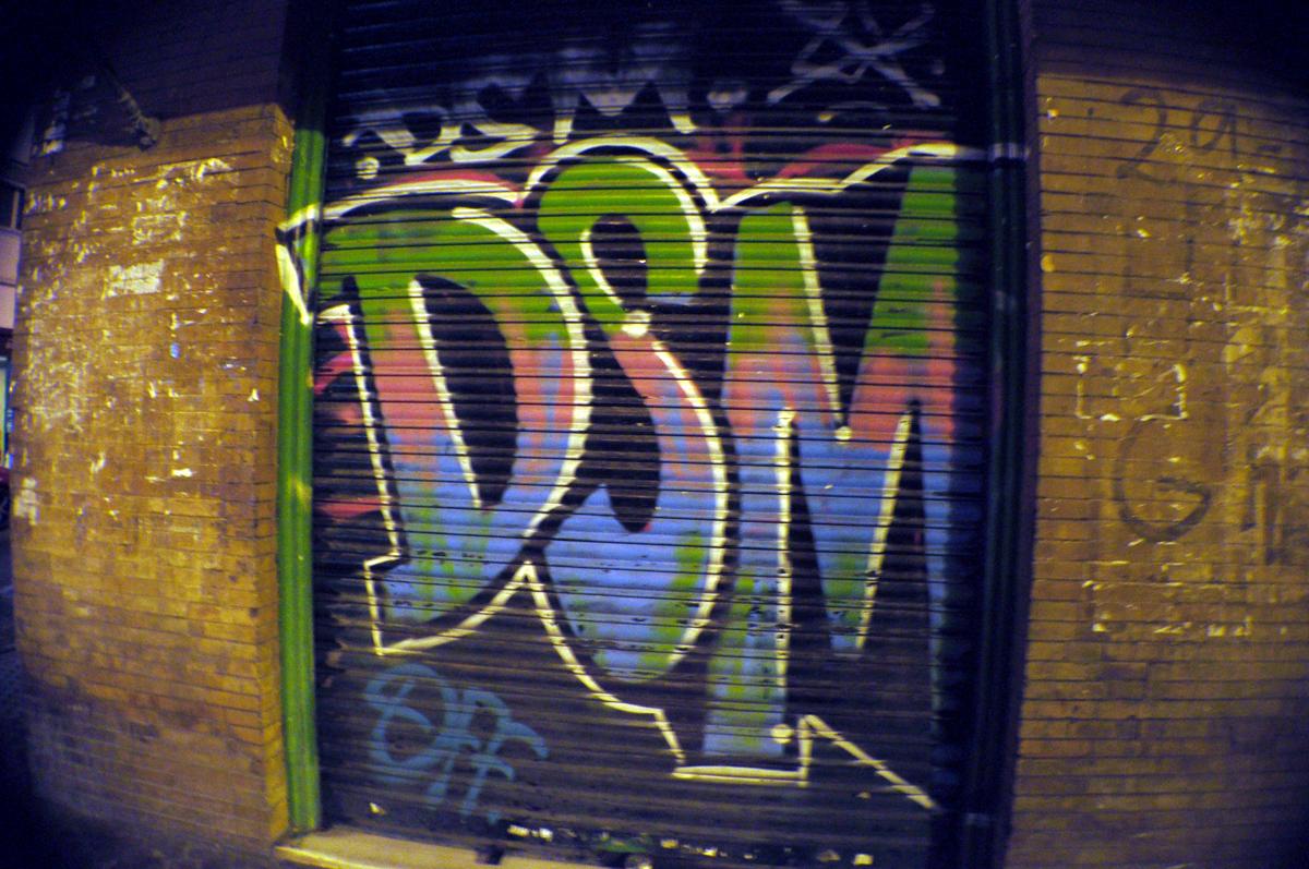 DSC_0397
