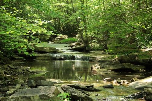 20150523_Camp_Creek_017