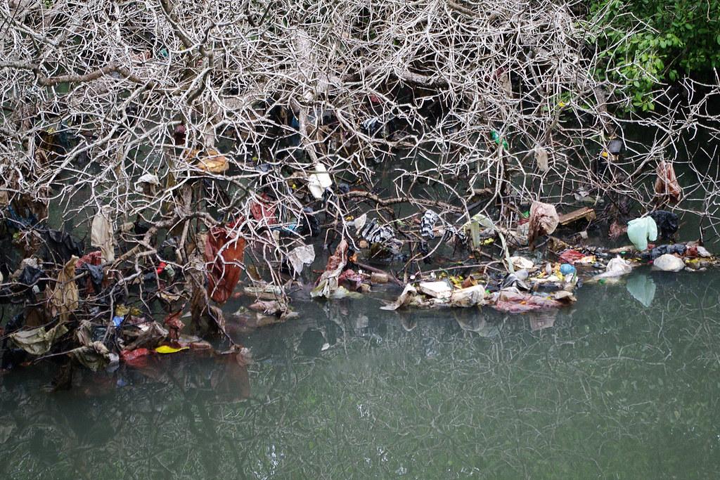 Mangrove Information Centre Denpasar  Denpasar hass a
