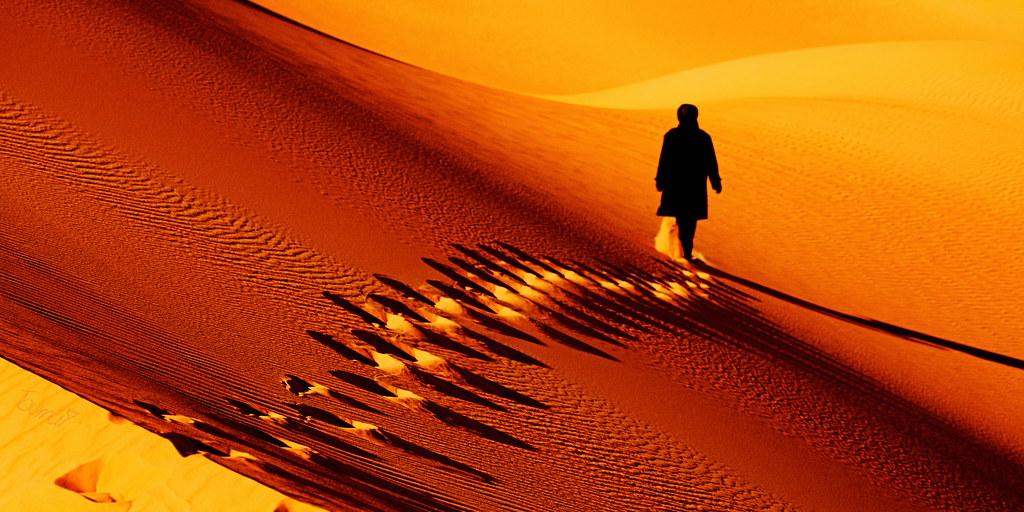 Orange Nature Desert Sand Sahara Walker 405 Large Sig Flickr