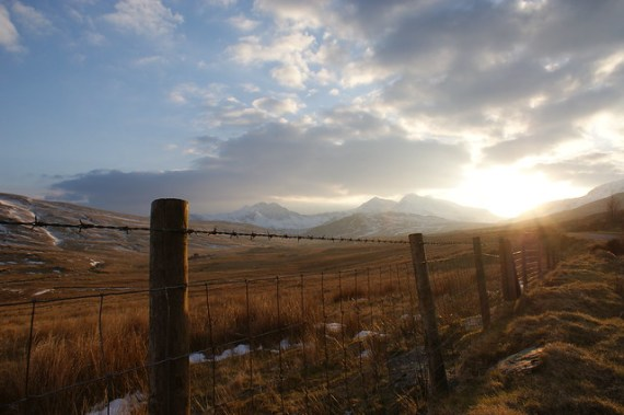 fence leading line landscape