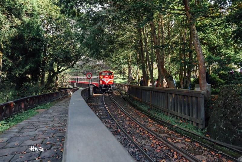 7|林道間的火車來了