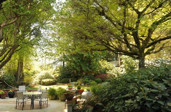 place relax backyard garden