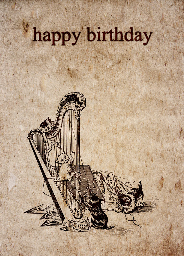 Happy Birthday Katten Harp A Series Of Designs That Are