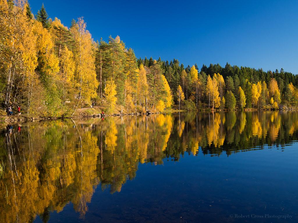 Late Fall Desktop Wallpaper Norwegian Autumn Reflections Autumn Leaves At Peak Color