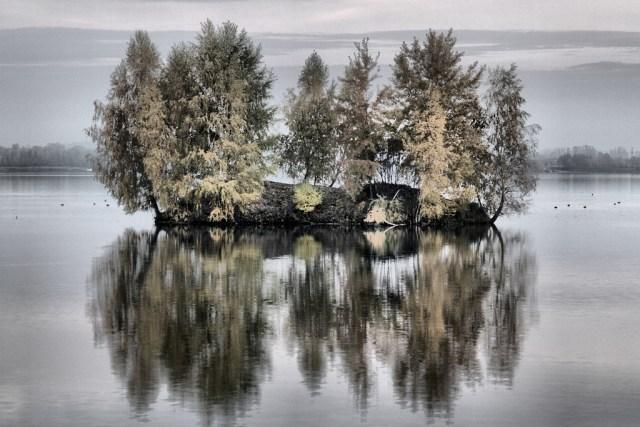 Autumn reflections (18)