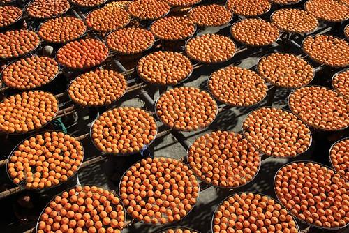 柿柿如意:新埔「味衛佳」觀光果園曬柿子(11.4ys)