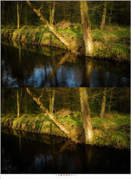 Polarisatie haalt de hele spiegeling in het water weg terwijl dit juist hetgeen is waar het in de foto om gaat. Het polariseren is hier dus niet gewenst. (Haida PRO II C-pol)