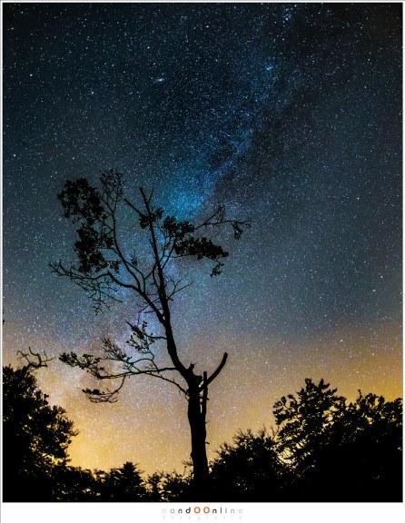 De Melkweg aan de Zuidzijde van de hemel waar de lichtvervuiling aan de horizon goed te zien is. (ISO6400 - f/2,8 - 20sec - 15mm fisheye)