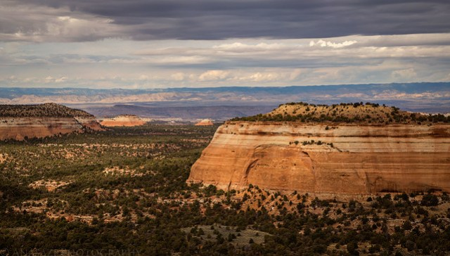 Black Ridge Canyons Wilderness