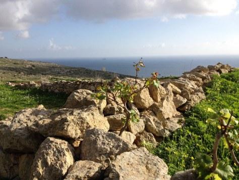 Ħaġar Qim