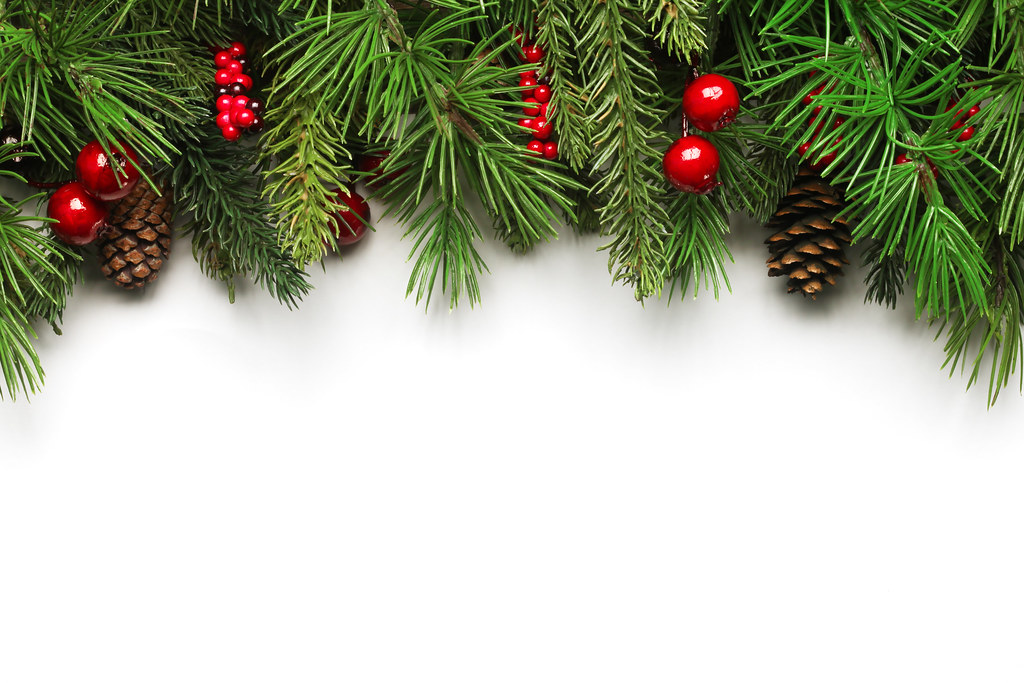 R Letter 3d Wallpaper Christmas Tree Branches Background Christmas Tree