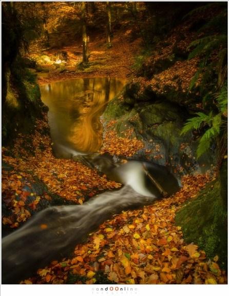 Een terugblik op Bain des Naïades verraad de aanwezigheid van een oude bosgeest, waarvan de contouren van het gezicht in het water te zien zijn. Misschien waakt hij over de waternymfen die 's-avonds laat dansen op de bladeren van hun bad onder aan de waterval. (24mm, f/11, ISO100, 25sec)