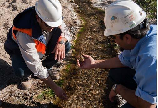 El Medio Ambiente y Minera Alumbrera