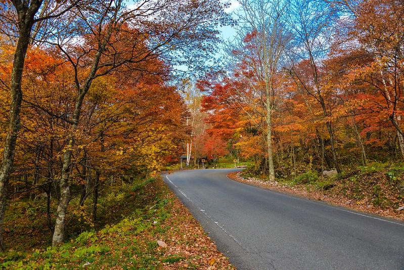 Kamikochi,尋找秋天的色彩