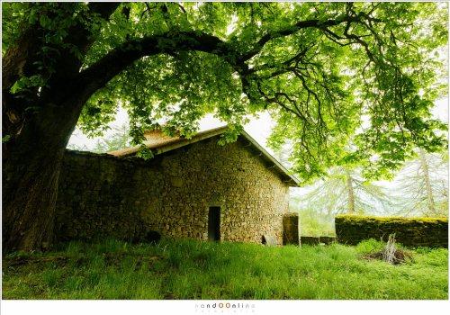 De kapel van chateau Folgoux, het simpele maar mooie chateau waar de kasteelboerderij van Le Fougeraie onderdeel van uitmaakt.