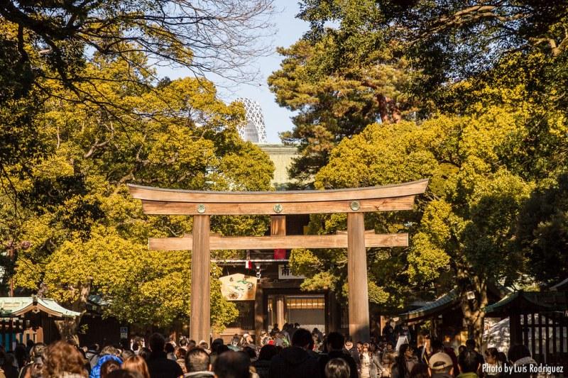 Meiji-Jingu-8
