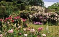 Mottisfont Abbey Rose Garden, Hampshire, UK | An exception ...