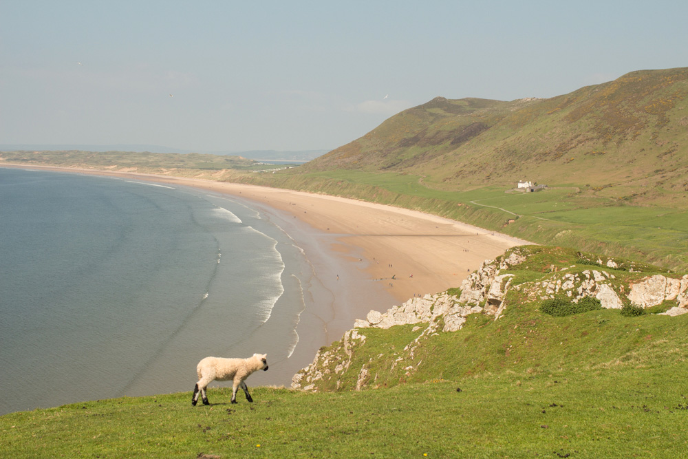 Rhossili Bay Cliffs 1