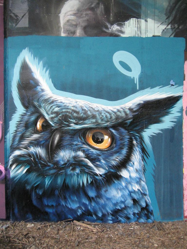Smug Owl graffiti Edinburgh  duncan c  Flickr
