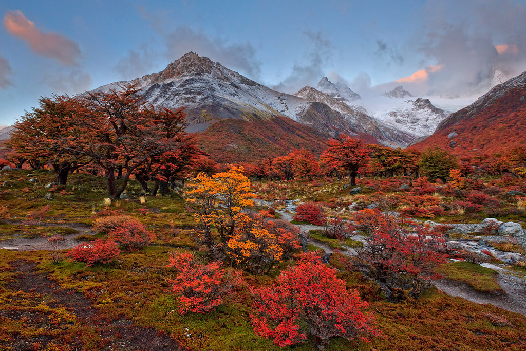 Late Fall Wallpaper Autumn In Argentina One Of The Reason I Pick My