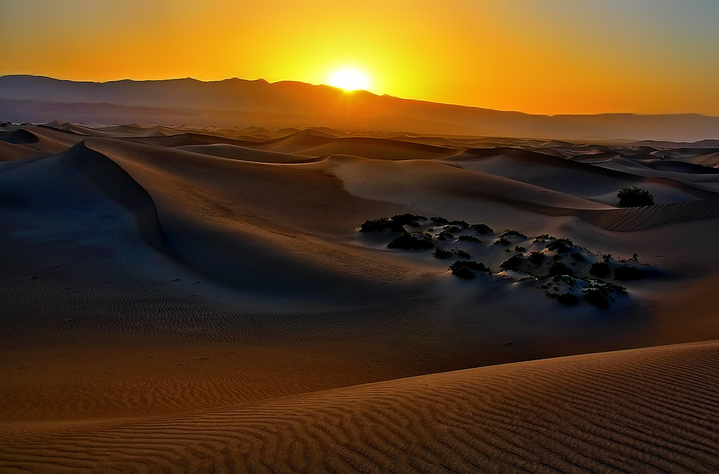 Sand Dune Sunrise  Only at sunrise can you get these