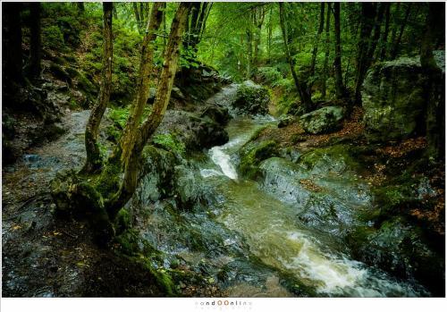 Regen vermengt zich met het stromende water, de paden en verraderlijk glad geworden. Het is oppassen om niet uit te glijden (18mm - (auto)ISO12800 - f/8 - t=1/25sec)