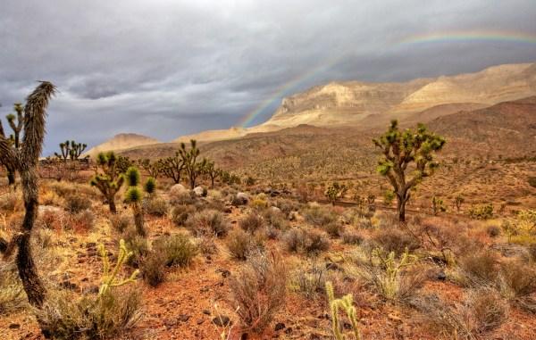 arizona landscape hualapai canyon