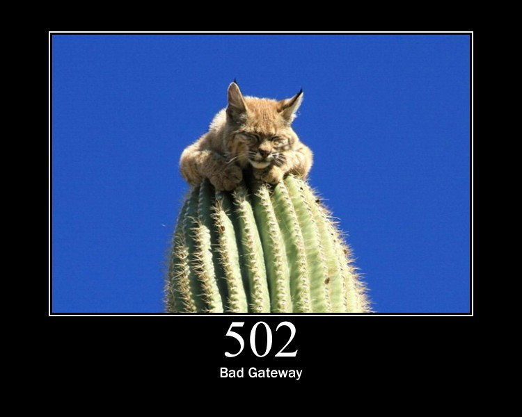 502 Bad Gateway The Server Was Acting As A Gateway Or