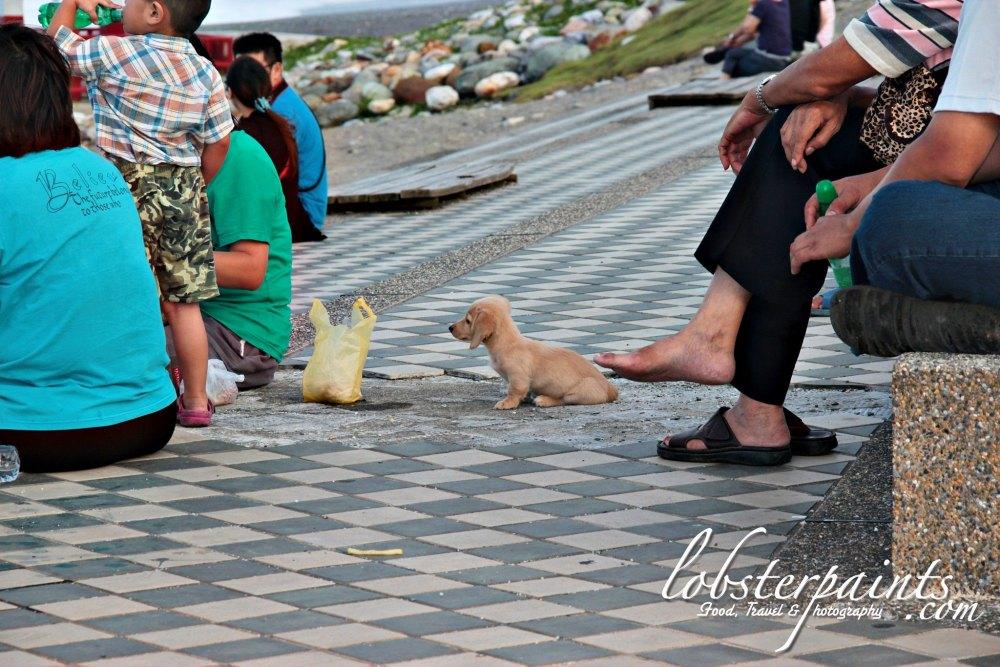 15 September 2012: Chishingtan 七星潭 | Hualien, Taiwan