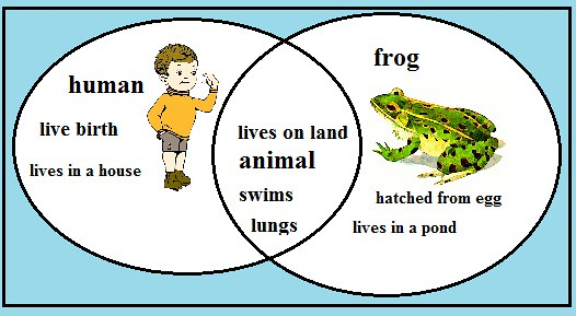 athens and sparta venn diagram lutron lighting wiring uk   are you a frog? take trip down to the frog … flickr