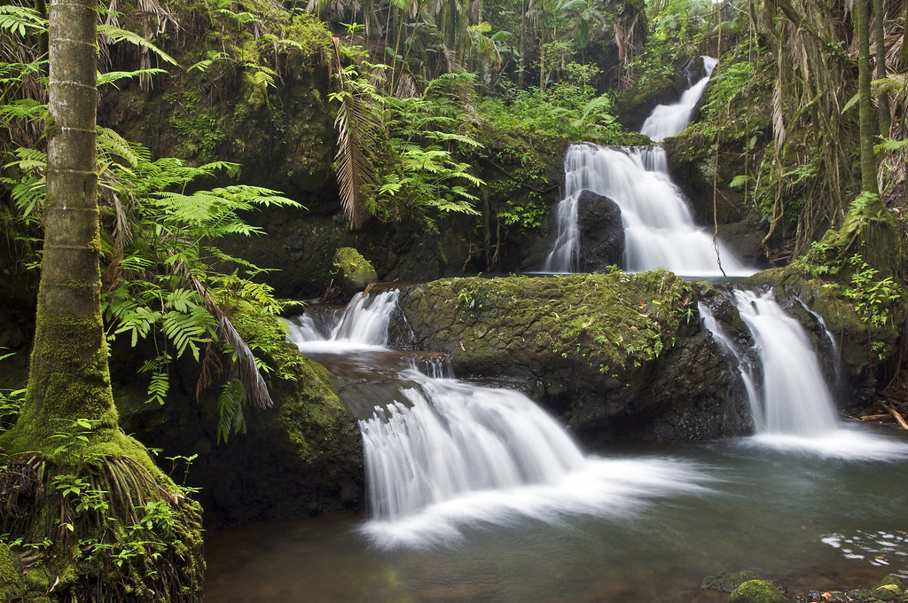 Water Fall Effect Wallpaper Jungle Waterfall South Hilo Hawaii I Ve Sort Of Given