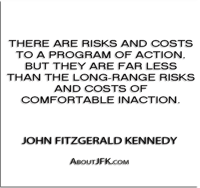 ''There are risks and costs to a program of action, but