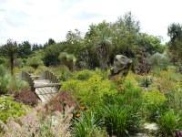Desert wash garden, East Ruston Old Vicarage Garden, Norfo ...