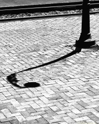 Summer Shadow   A lamp post casts a shadow in the hot ...