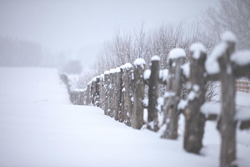 Snow Field United States Colorado Aspen  wwwchrisford  Flickr