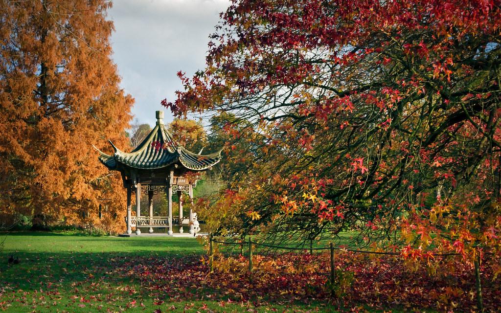 Free Wallpaper Fall Scenes Oriental Pagoda Rhs Gardens Wisley Surrey Uk Chinoise