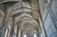 Gothic vaulted ceilings in the Palace of the Popes in Avig ...