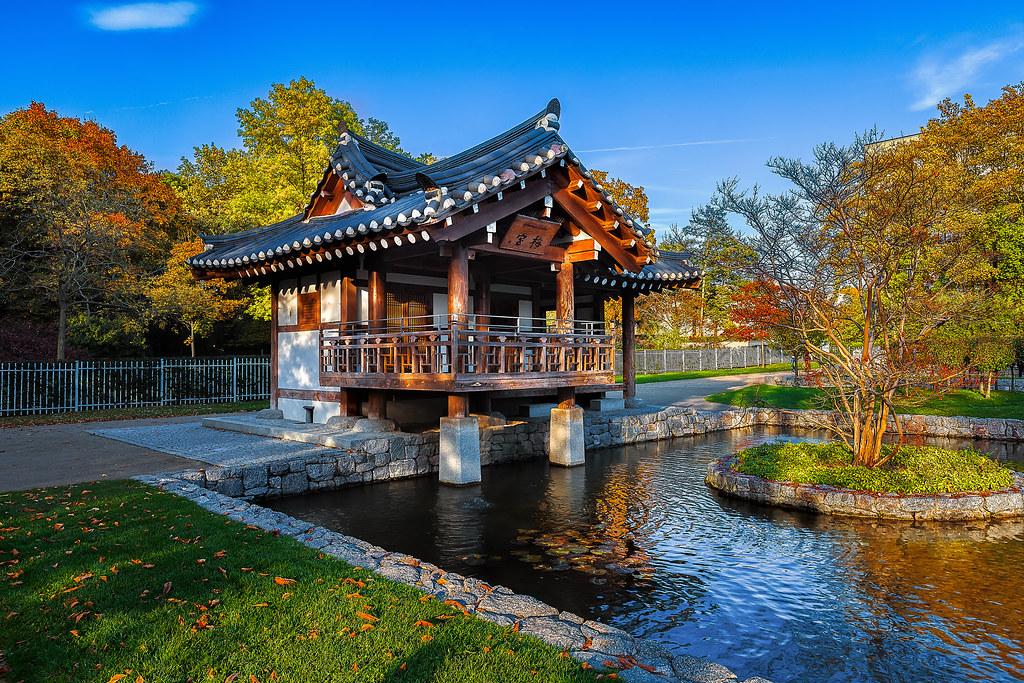 An indian summer in korean garden
